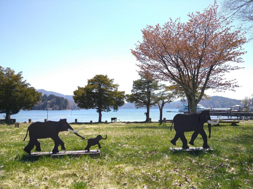野尻湖 ナウマンゾウ